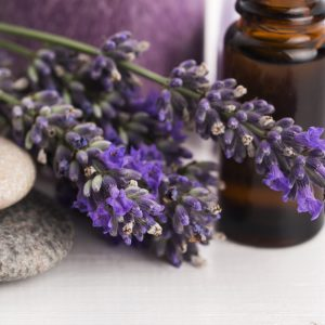 Essential Oils by Young Living